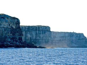 Sydney Cliffs