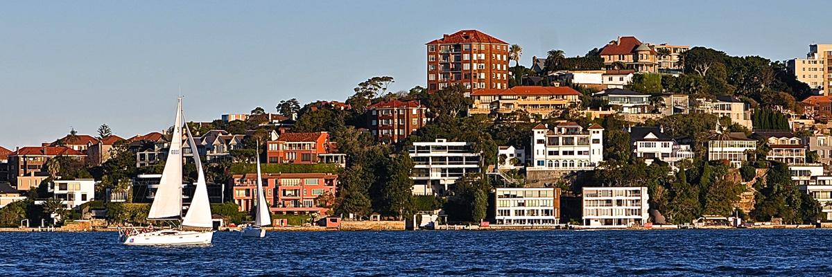 Sydney Harbor Sailboat