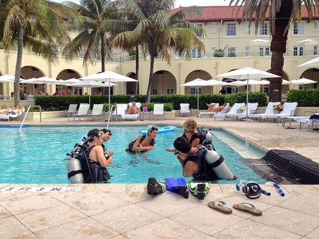 southpoint divers at waldorf astoria pool