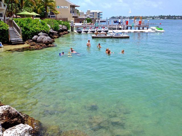 snorkelers at hyatt key west