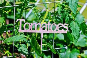 tomatoes metal garden sign