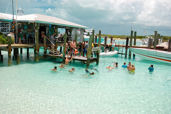 Swimming with Sharks at Compass Cay Marina